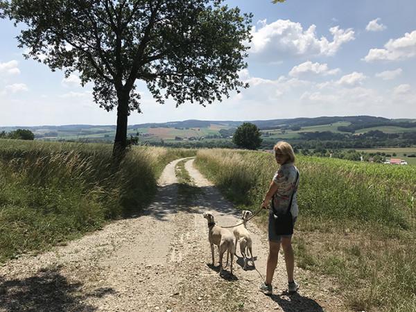 Blog-leiky_Wander_Birnbach_IMG_2803