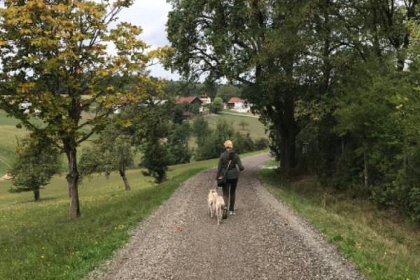 Blog_Leiky_Waldhof-Wanderweg-G