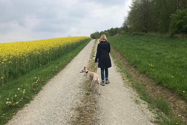 Wanderweg_Bayerbach-Huckenham_Blog