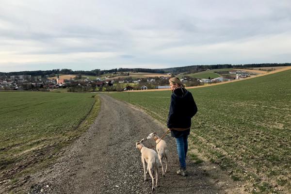 Leiky-Blog-Johanniskirchen