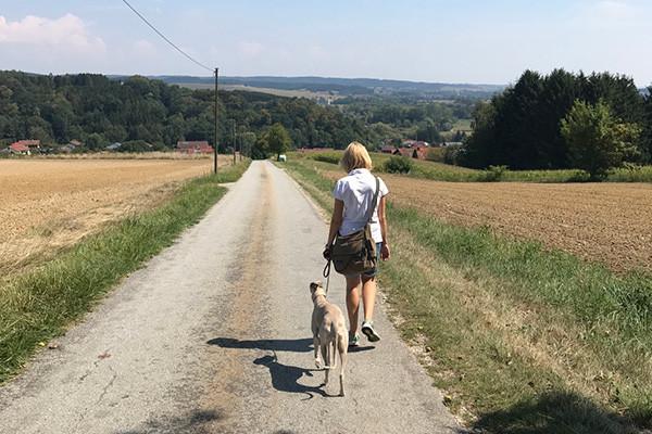 Leiky-Blog-Wanderweg-1-Brombach