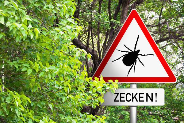 Zecken-Hunde_Blog